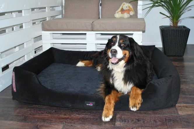 Orthopädisches Hundebett VINCENT L 110 cm High-Tech-Velours (Triton) und Cord | Farbe 03 Schwarz - L+ | Schwarz