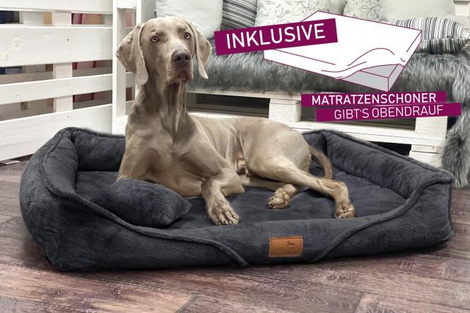 EINZELSTÜCK | Orthopädisches Hundebett TYSON TEDDY L+ mit Schonbezug Gratis