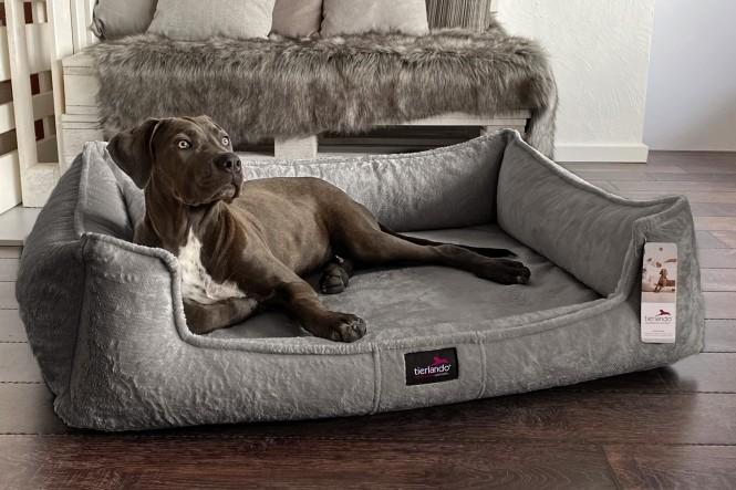 FRANKLIN TEDDY | Orthopädisches Hundebett M+ | Grau