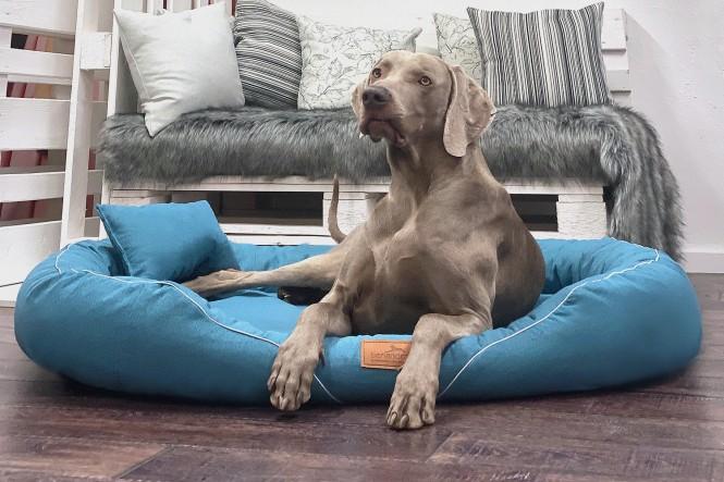 TIFFANY | Orthopädisches Hundebett XL | Petrol