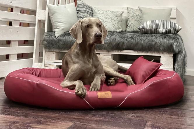 TIFFANY EASY CLEAN   Orthopädisches Hundebett XL   Dunkelrot