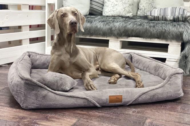 TYSON TEDDY | Orthopädisches Hundebett - L+ | Graphit Taupe