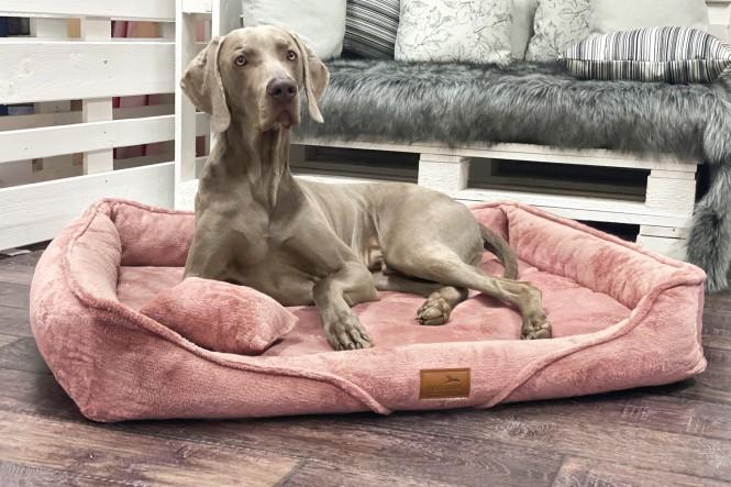 TYSON TEDDY   Orthopädisches Hundebett M+   Altrosa