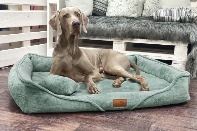 TYSON TEDDY | Orthopädisches Hundebett M+ | Mint