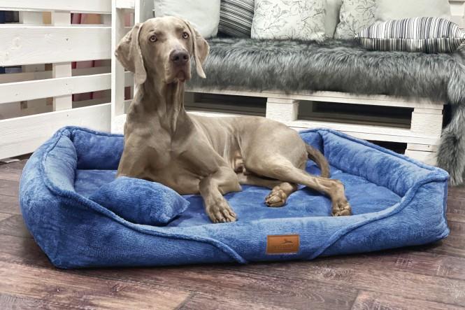 TYSON TEDDY | Orthopädisches Hundebett M+ | Blau