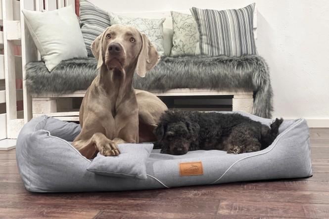 WILLIAM COUTURE | Orthopädisches Hundebett M+ | Graphit