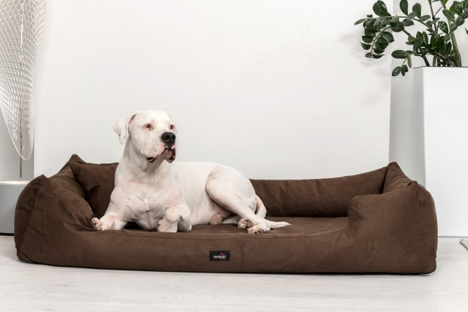 Hundebett MORITZ KOMFORT XL+ 130 cm | samtweiches Velours | Braun - XL+ | Braun