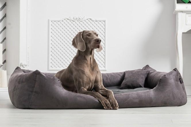 Hundebett MORITZ KOMFORT L+ 110 cm | samtweiches Velours | Graphit - L+ | Graphit