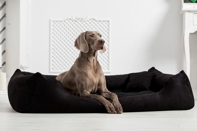 Hundebett MORITZ KOMFORT L+ 110 cm | samtweiches Velours | Schwarz - L+ | Schwarz