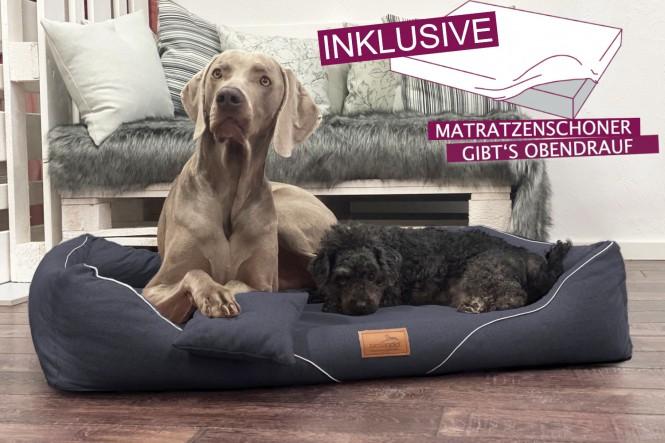 EINZELSTÜCK | Orthopädisches Hundebett WILLIAM COUTURE XL+ mit Schonbezug gratis