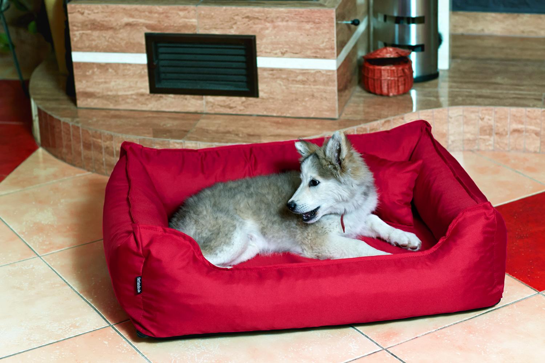 tierlando orthop disches hundebett donald visco anti haar. Black Bedroom Furniture Sets. Home Design Ideas