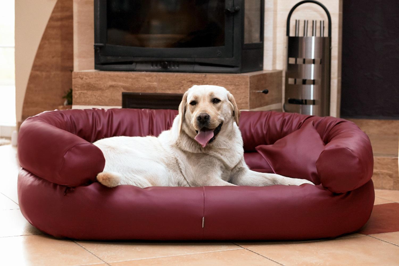 hundebett jeffrey xxl 150 cm kunstleder bordeaux rot. Black Bedroom Furniture Sets. Home Design Ideas