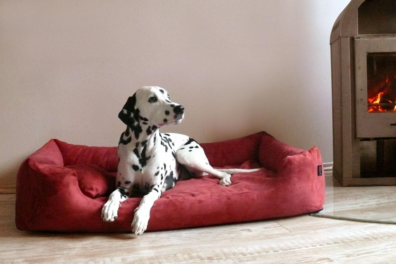 orthop disches hundebett pluto visco m 80 cm velours. Black Bedroom Furniture Sets. Home Design Ideas