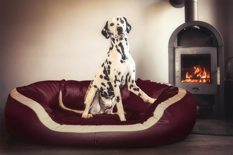 orthop disches hundebett pepper xxl 160 cm kunstleder. Black Bedroom Furniture Sets. Home Design Ideas