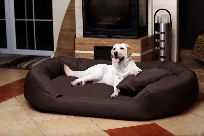 orthop disches hundebett sammy visco xxl 140 cm polyester. Black Bedroom Furniture Sets. Home Design Ideas