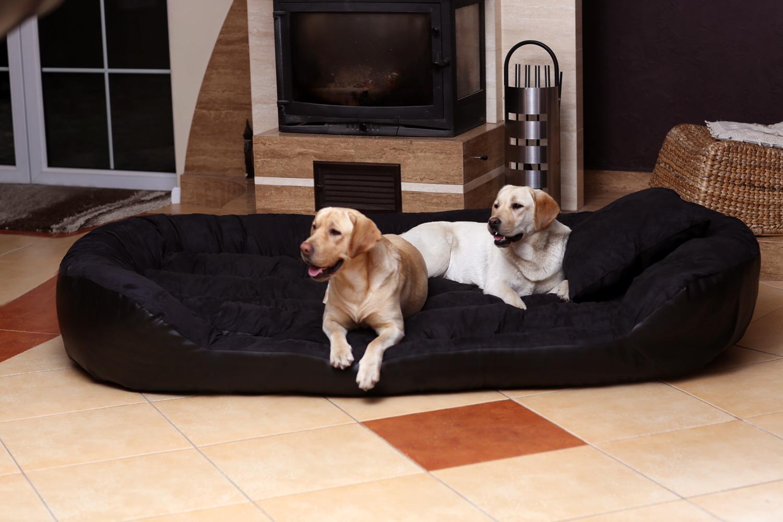 hundebett philip xxxxl 220 cm kunstleder schwarz tierlando. Black Bedroom Furniture Sets. Home Design Ideas