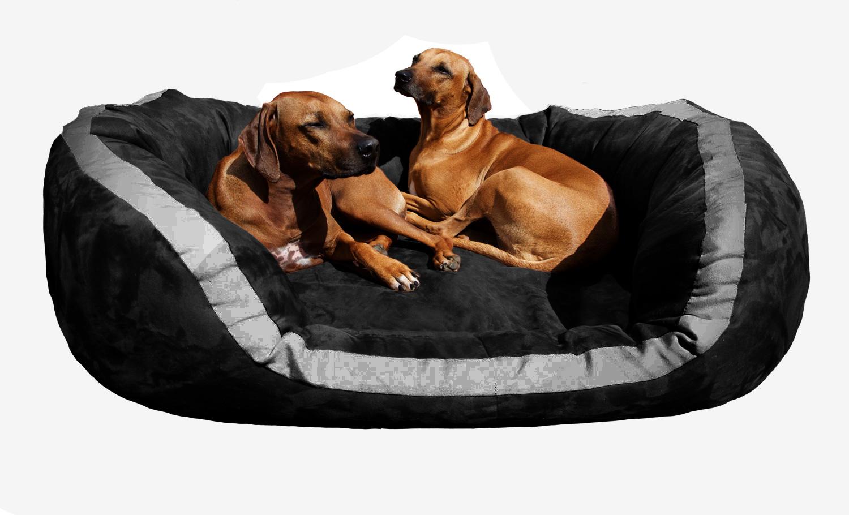 orthop disches hundebett pepper xxl 160 cm velours schwarz. Black Bedroom Furniture Sets. Home Design Ideas